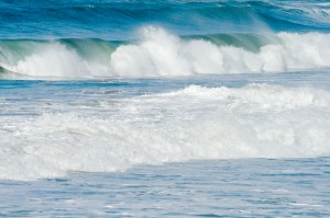 Take A Moment of Reflection: Facing Fear-Moving Into the Waves